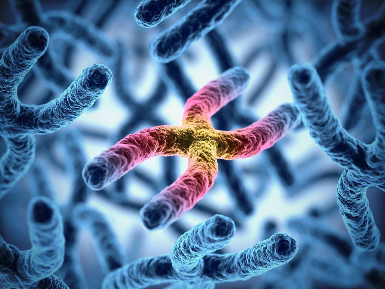 AGA若ハゲの原因 遺伝